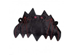 Αποκριάτικη τσάντα Μάγισσας