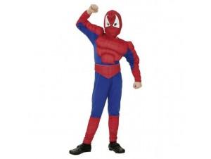 Αποκριάτικη στολή Αγόρι Spiderman