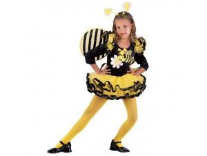 Αποκριάτικη στολή Μελισσούλα Μπαλαρίνα