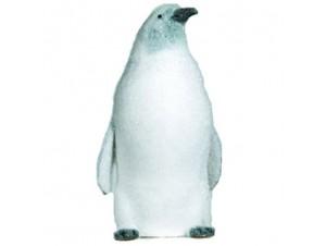 Πιγκουίνος Γκρι-Λευκός