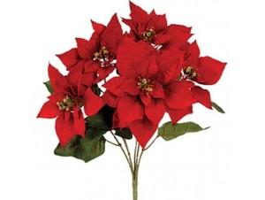 Χριστουγεννιάτικο Λουλούδι διακόσμησης