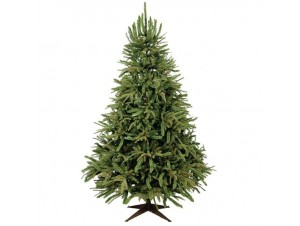 Χριστουγεννιάτικο Δέντρο 3,00 -
