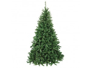 Χριστουγεννιάτικο Δέντρο Wintergreen 2,70