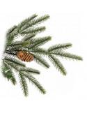 Χριστουγεννιάτικο Δέντρο LN 0701-B 3,00 m