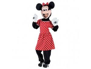 Αποκριάτικη στολή Ποντικούλα