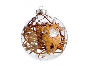 Διάφανη Χριστουγεννιάτικη Γυάλινη Μπάλα με Σχέδιο
