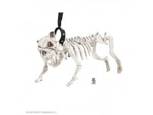 Αποκριάτικο σκυλί σκελετός με λουρί
