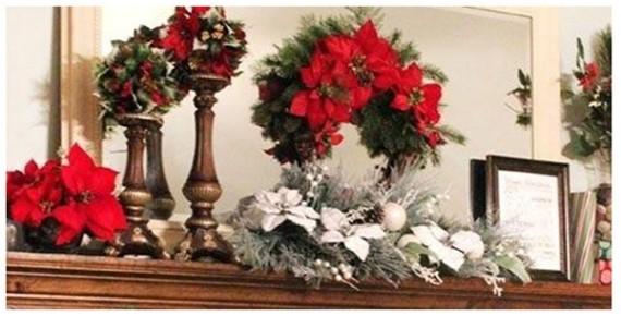 Χριστουγεννιάτικα λουλούδια