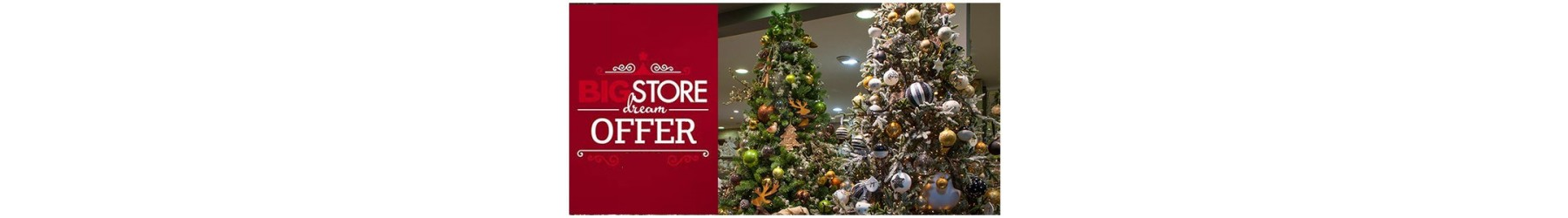 Χριστουγεννιάτικα δέντρα - Προσφορές