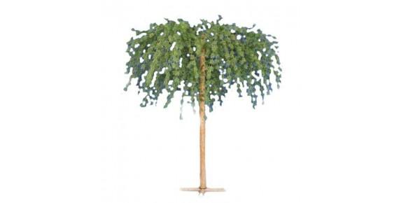 Δέντρα Ανάποδα- Κρεμαστά