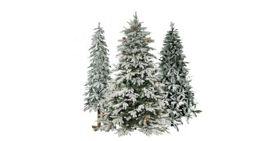 Χιονισμένα δέντρα